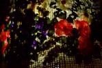 004_Illumination